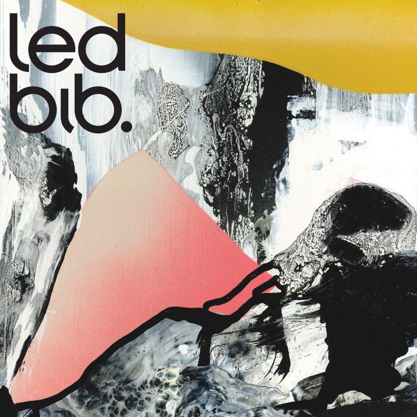 Led Bib
